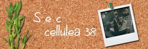 89: http://s-e-c-cellulea38.skyrock.com/