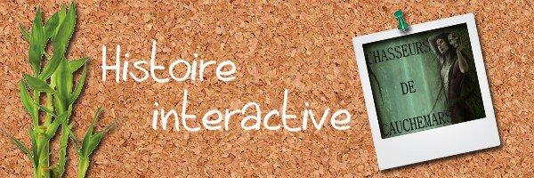 101: http://histoire-interactive.skyrock.com/