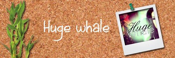 156: http://huge-whale.skyrock.com/