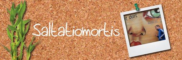 166: http://saltatiomortis.skyrock.com/
