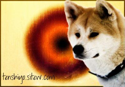 Site internet : http://tenshiyo.sitew.com