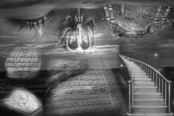 Définition de L'islam