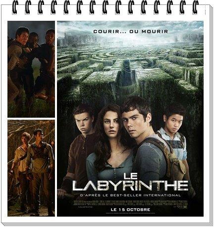 Film : Le Labyrinthe (2014)