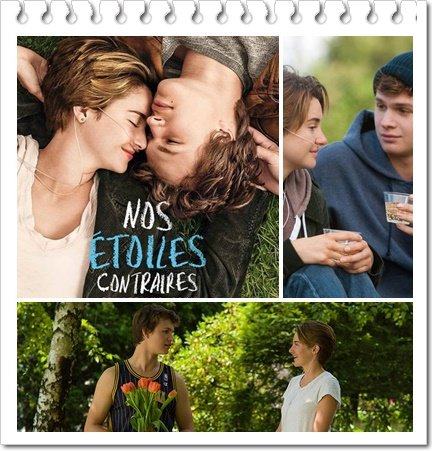 Film : Nos Etoiles Contraires / The Fault in Our Stars (2014)