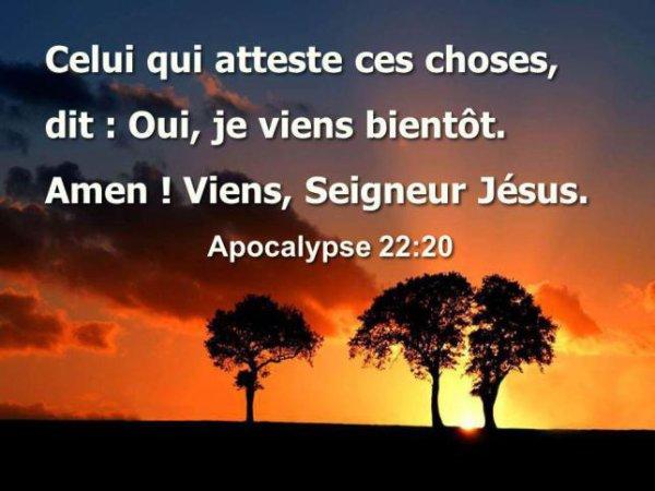 Jésus atteste Lui même qu'Il reviendra comme un voleur par surprise .