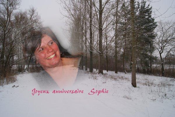 Joyeux anniversaire Sophie  !