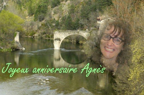 Joyeux anniversaire Agnès