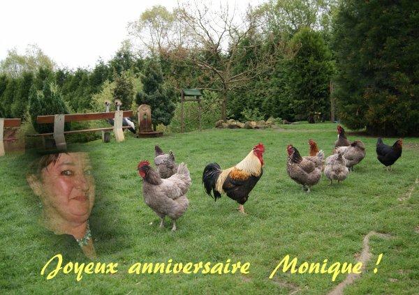 Joyeux anniversaire Monique:-)