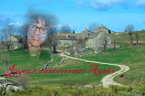 Joyeux anniversaire Agnès !!