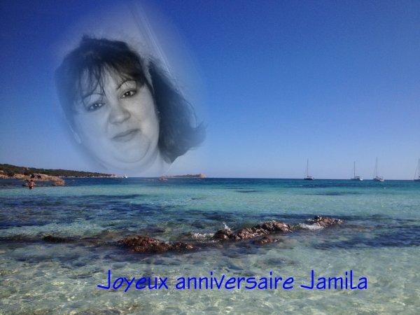 Joyeux anniversaire Jamila...