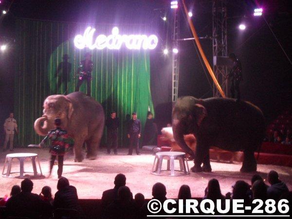 Cirque Médrano 2015