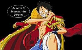 Le futur roi des pirate !!