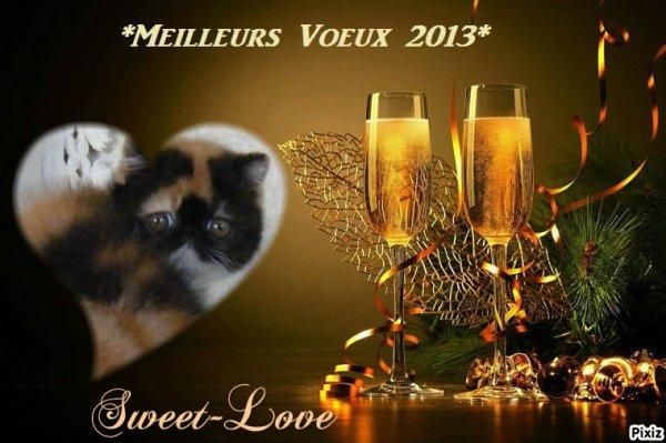 ♥ Tous mes meilleurs v½ux pour 2013 !! ♥