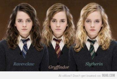 Hermione Serdaigle/Gryffonfor/Serpentard