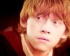Sondage : Pourquoi aimez-vous Ron ?
