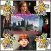Montage pour le concours de Hermione-841