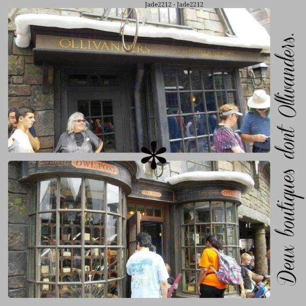 "Mon séjour à ""The Wizarding World of Harry Potter - Universal Studio Orlando"""