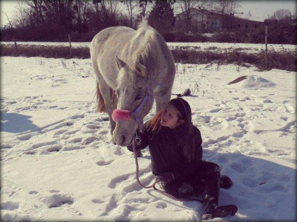 Gagnante : Poney de Sibérie