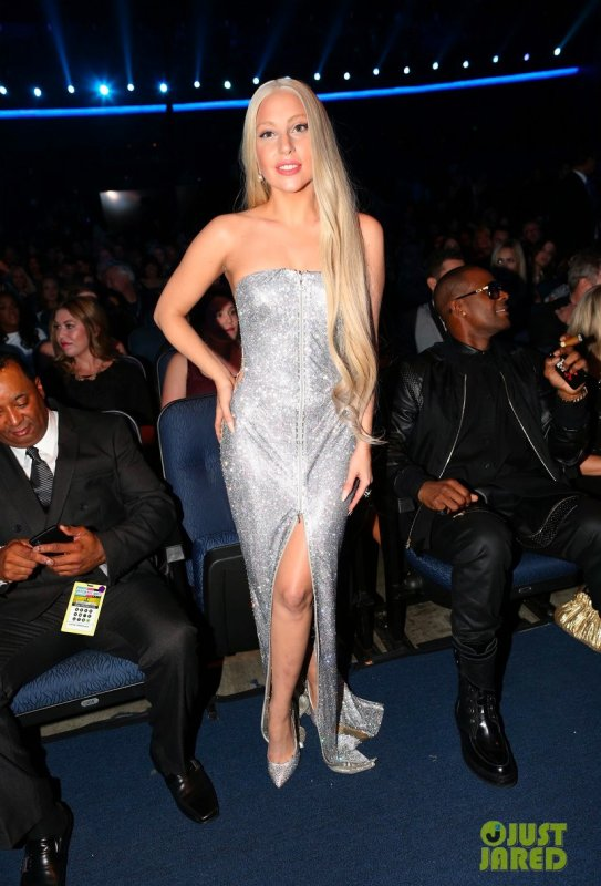 American Music Awards 2013  Los Angeles