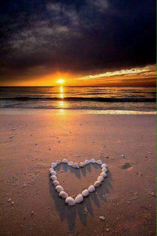 L'amour c'est une belle chose faut il encore trouver le vrai..