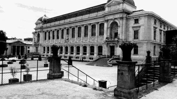 Muséum national d'histoire naturelle.