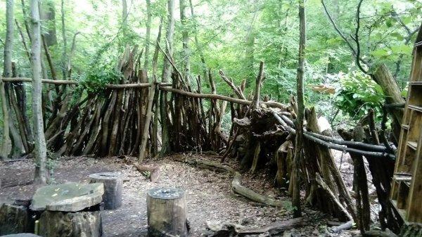 Forêt de Rambouillet .