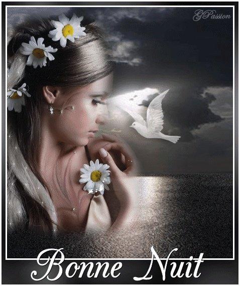 bonne nuit mes amies