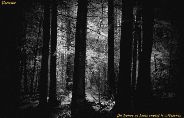 Prologue: Un esprit perdu dans un monde de haine...