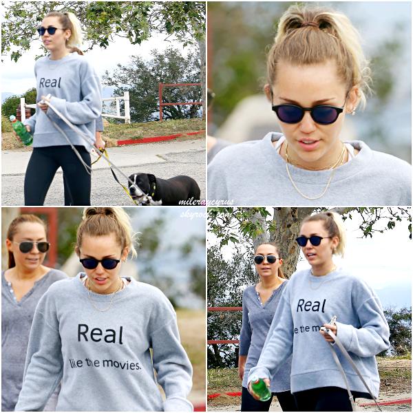 13/04/2017 : Miley et sa soeur Brandi ont été aperçues se promenant à Studio City, en Californie.