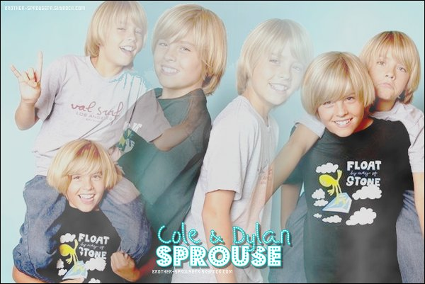 offres de commentaires on  Brother-SprouseFR