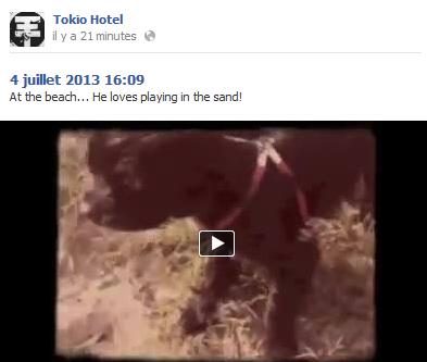» Twitter et Facebook : Tokio Hotel