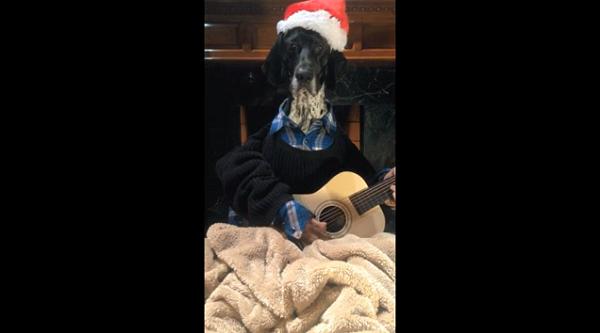» Tokio Hotel : Une nouvelle vidéo pour Noël sur leur chaîne YouTube après 3 ans d'absence !
