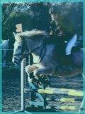 Photo de allez-poney