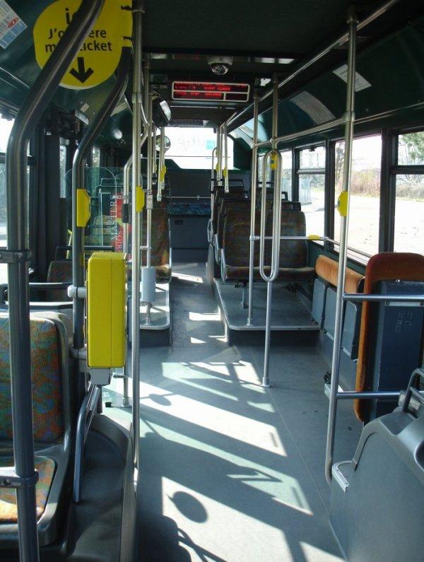 HEULIEZ GX 317 (moteur diesel) type STANDARD  numérotés de 105 à 124 : 19 bus identique en circulation actuellement.