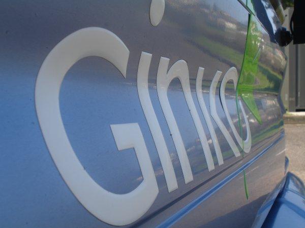 Le réseau de bus  de la ville de Besançon: GINKO