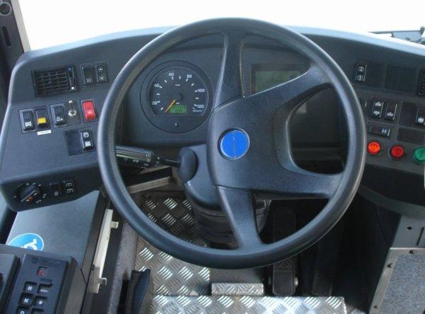 HEULIEZ  GX 117 L (moteur diesel) type MIDI numérotés de 77 à 85 : 10 bus identique en circulation actuelllement.