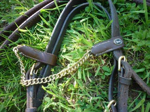 Filet havane taille poney avec frontal en chainette .