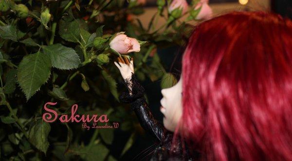 """""""Que l'on peigne toutes les roses en rouge !"""" #Alice in Wonderland"""