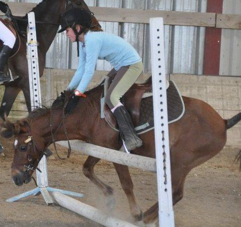 Ce poney c'est que du bonheur ;)♥