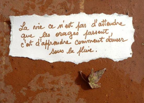Citation du jour 2