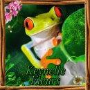 Photo de kevnelle-fleurs
