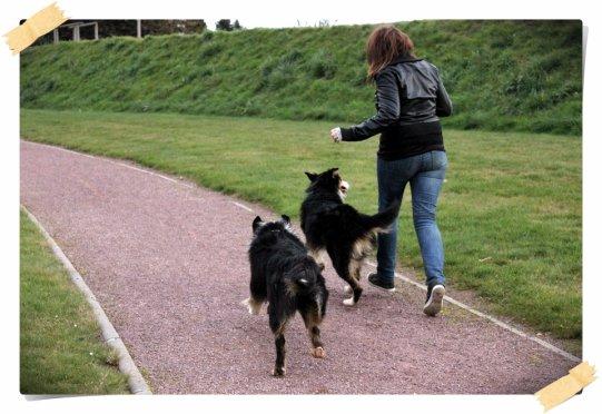 Ce qui est le plus plaisant avec un chien, c'est qu'on peut faire l'idiot avec lui et que non seulement, il ne vous fera aucun reproche, mais il fera l'idiot lui aussi.