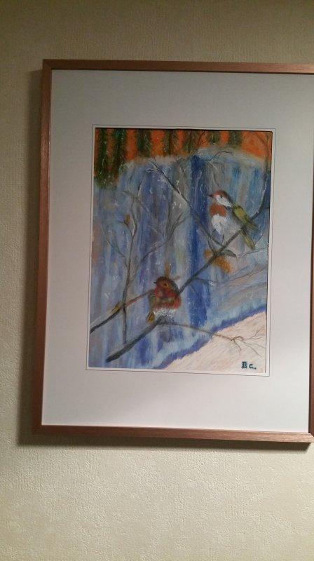 oiseaux d hiver