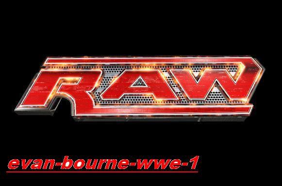 Résultats de Raw du 9.1.11