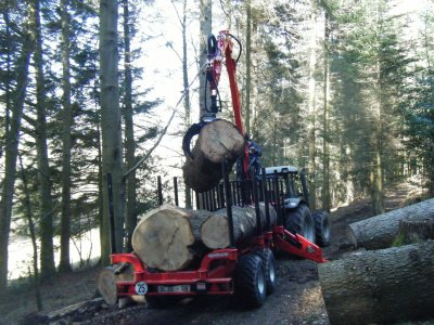 transport de grume