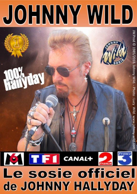 affiche officiel de johnny