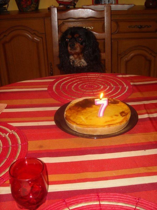 Bon anniversaire Bingo