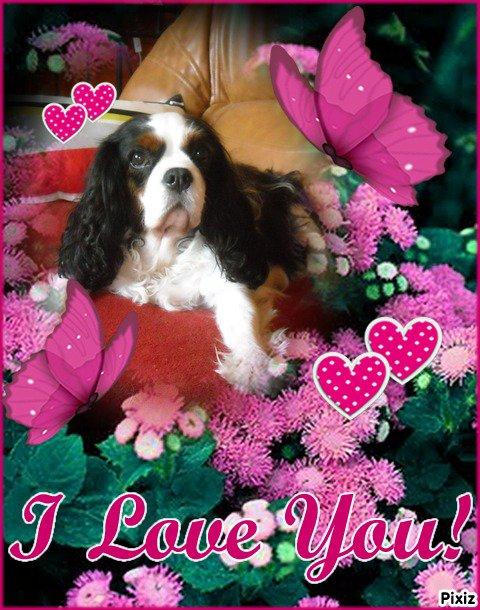 Aileen a eu 9 ans le 10 Septembre 2014