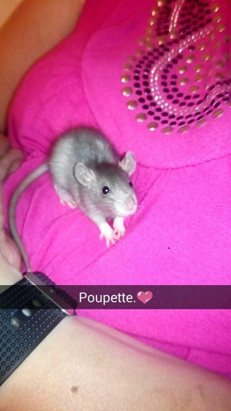 mon baby chou -> Poupette ma petite princesse d'amour ♥