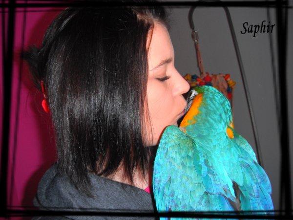 Mon amour saphir ♥